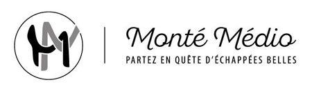 logo montemedio